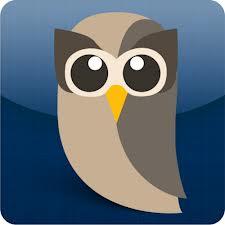 Hootsuite Owl