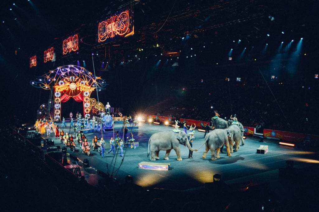 Ringling Bros. & Barnum and Bailey Circus Rebranding